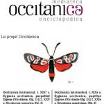 occitanica