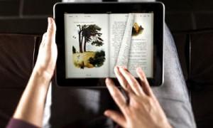 Más de 50 millones de estadounidenses leyeron libros digitales en 2012, pero sus hábitos están cambiando